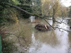 From bridge at Creynolds Lane 4