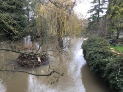 From bridge at Creynolds Lane