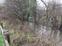 From Watery Lane 6